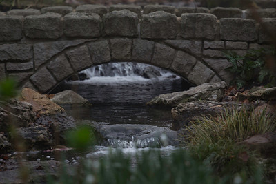 Woodland Garden bridge
