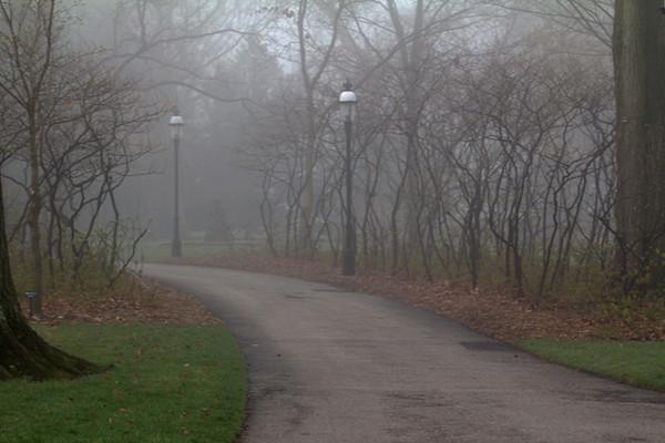 Missouri Botanical Garden 2012-03-17