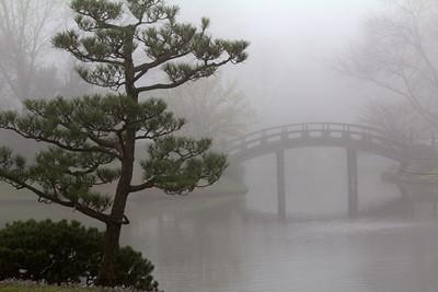Bridge to the Japanese Garden Sacred Island  - I