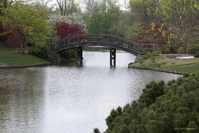 Front bridge to Sacred Island, Japanese Garden
