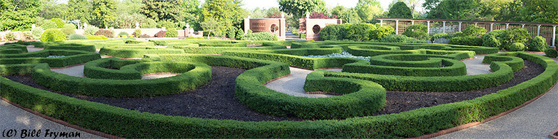 Boxwood Garden Panorama - Image created by merging eight individual images to capture entire garden except small area on the left