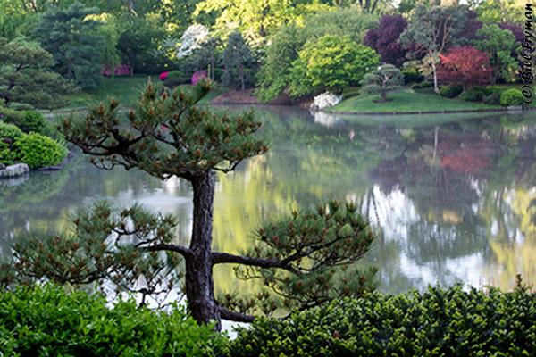 Missouri Botanical Garden 2012-04-07