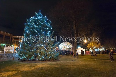 12/3/2016 - The official tree lighting at the Gaithersburg Jingle Jubilee, ©2016 Jacqui South Photography