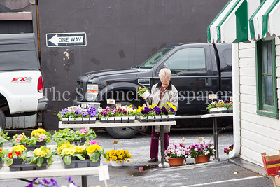 Pam Allen from Bethesda, browses flowers. 04 01 2017 Bethesda Farmers Market opening day