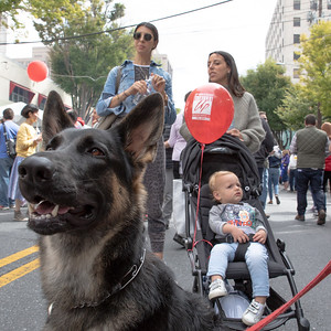 October 5, 2019 - Two-legged and four-legged member family members enjoy the food and fun at the 2019 Taste of Bethesda. Photo by Mike Clark/The Montgomery Sentinel