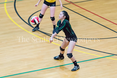 11/20/2016 - Damascus setter Cecilia Groves (6) during the 3A Championship Volleyball game, ©2016 Jacqui South Photography