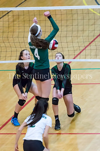 11/20/2016 - Sarah Noland (3) and Kaylen Bernota (5) ready for the ball during the 3A Championship Volleyball game between Atholton an Damascus, ©2016 Jacqui South Photography