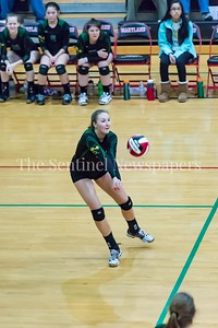 11/20/2016 - Damascus middle blocker Sara Gruber (11) during the 3A Championship Volleyball game, ©2016 Jacqui South Photography