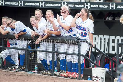 5/27/2017 - Sherwood dugout during the Maryland 4A championship softball game, ©2017 Jacqui South Photography