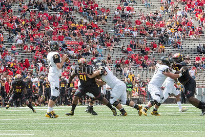 9/9/2017 - Adam McLean (91) (Quince Orchard HS) looks to Towson quarterback Ryan Stover (21), Towson v University of Maryland Football, Photo Credit: Jacqui South