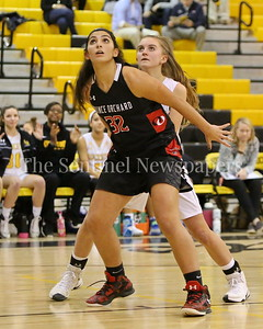 "George P. Smith/The Montgomery Sentinel    Quince Orchard High School's Isabella ""Izzy"" Nicolaou (#32) boxes out Richard Montgomery High School's Kate Schuck (#3) in the game played Friday, January 19, 2018."