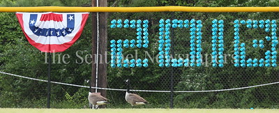 George P. Smith/The Montgomery Sentinel    Two geese flew in the Whitman High School outfield to help the Vikings with defense.