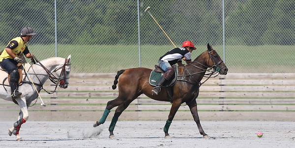 George P. Smith/The Montgomery Sentinel    Lautaro Garcia gets ready to strike the ball on the near-side as Greg Grigorian gives chase during a polo match at the Congressional Polo Club in Poolesville, Maryland on Sunday, August 5, 2018.