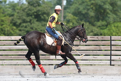 George P. Smith/The Montgomery Sentinel    Federico Potel looks for the ball during a polo match at the Congressional Polo Club in Poolesville, Maryland on Sunday, August 5, 2018.