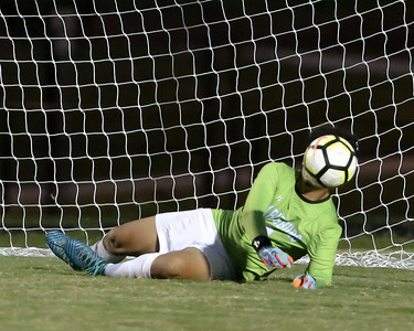 Clarksburg Goalie Marlon Lopez stops this shot on goal the hard way. Lopez stopped all but two penalty kicks. PHOTO BY MIKE CLARK