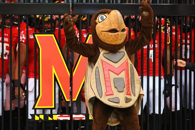 George P. Smith/The Montgomery Sentinel    Univerity of Maryland's mascot Testudo about to unleash the Terrapins from the Terrapin Dome.
