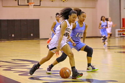 George P. Smith/The Montgomery Sentinel    Richard Montgomery's Gloria Moudou (22) drives past Clarksburg's Alanna Tate (14).