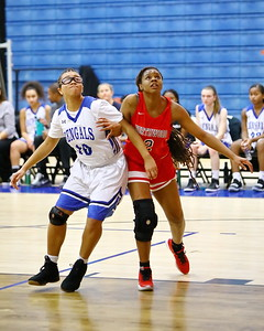 George P. Smith/The Montgomery Sentinel    Blake's Alexis Owens (10) and Northwood's Jordan Sales (2) battle under the boards.