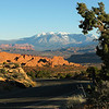 Along the road at Arches NP