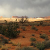 Stormy day at Arches National Park