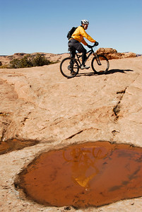Reflections, Tom, Slick Rock Trail