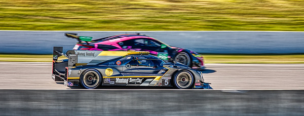 2019 Mobil 1 SportsCar Grand Prix @ Canadian Tire Motorsport Park - Filipe Albuquerque and Joao Barbosa in the #5 Cadillac DPi - Mustang Sampling Racing AND Mario Farnbacher and Trent Hindman in the #86 Acura NSX GT3 - Meyer Shank Racing w/ Curb-Agajanian