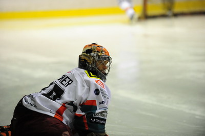 MobilX Vipers vs Sheffield Steelers @ WB 27th Feb