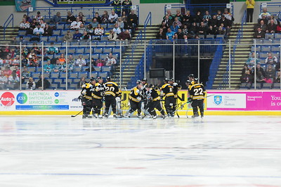 MobilX Vipers vs Sheffield Steelers Away 26th Feb