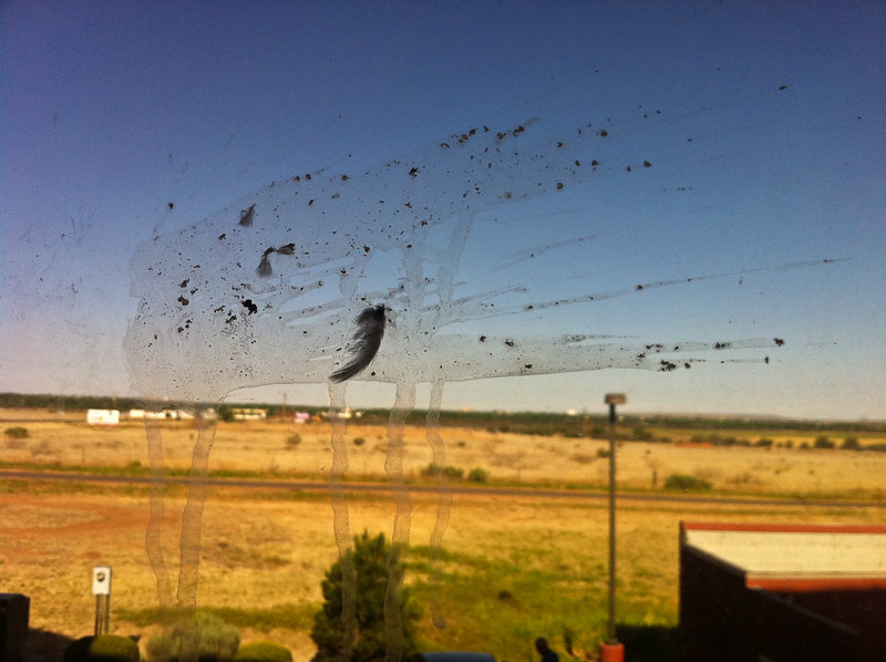 Nice View - The view from our hotel in Tucumcari, NM