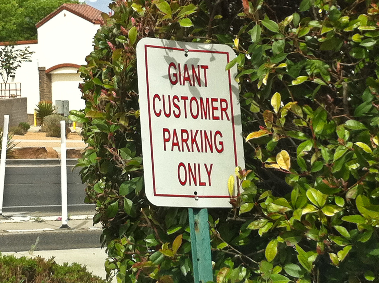 Giant Customer Parking Only [Normal sized customers are not allowed.]