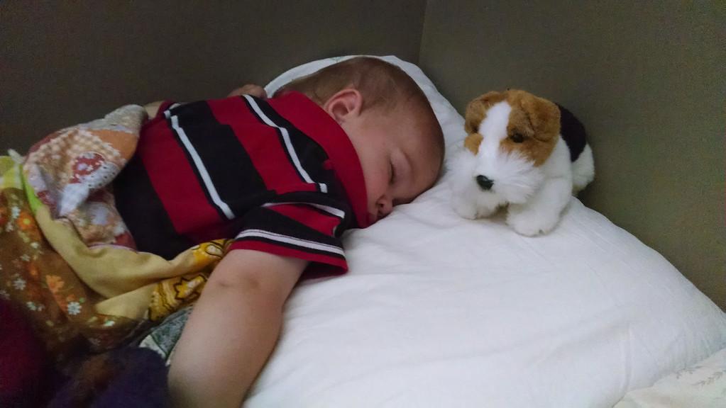 Sleeping on his new big bed.