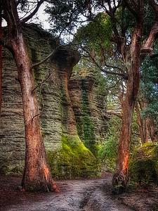 Newnes Canyon