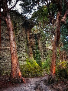 Newnes Canyon