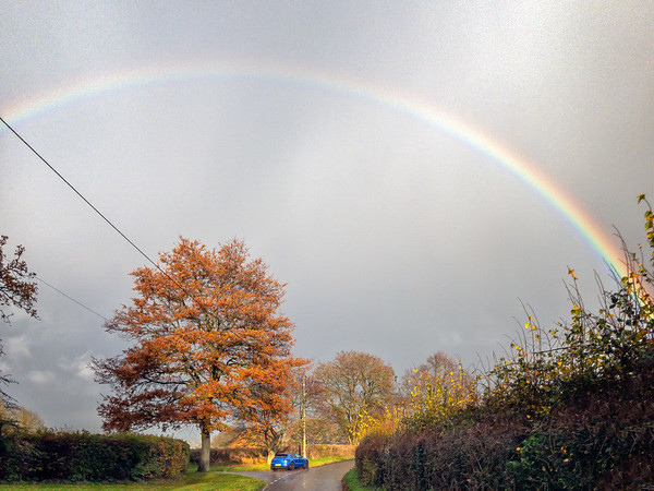 Corsley Rainbow