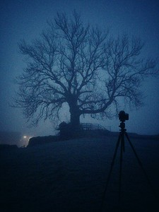 Foggy morning in Vordingborg