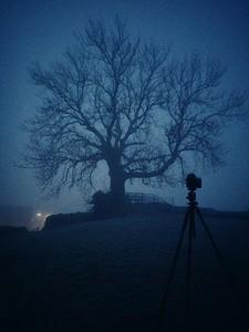 Foggy morning in Vordingborg