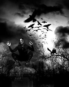 the crow 7