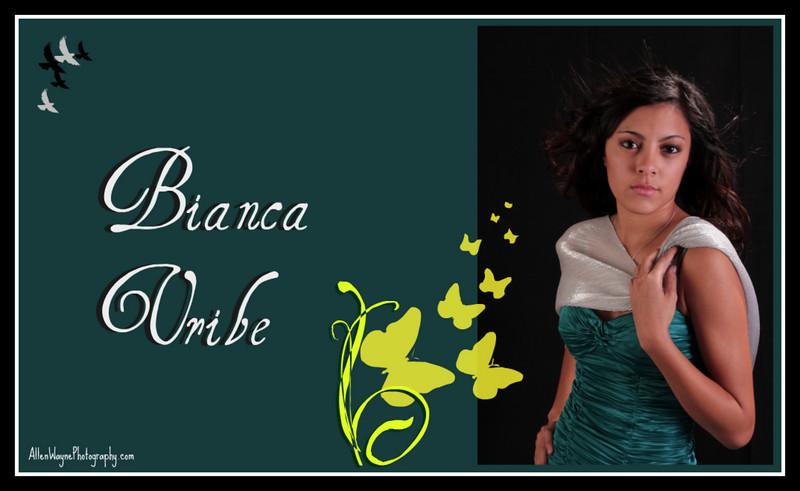http://www.allenwaynephotography.com/Model-Portfolios/Bianca-ii/Bianca-collage-01/788494098_ToFWT-L.jpg