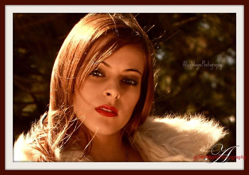 http://www.allenwaynephotography.com/Model-Portfolios/Jenny-Ray/IMG0711-1pp/1082186377_AKph9-L-1.jpg