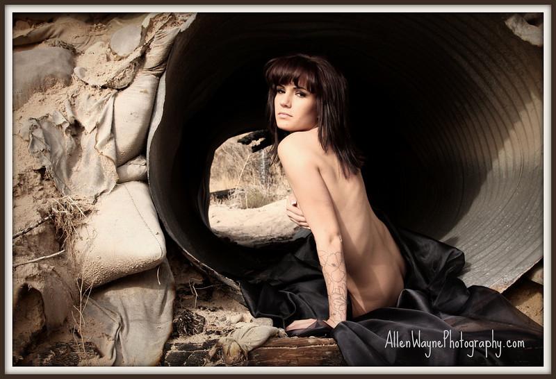 http://www.allenwaynephotography.com/Model-Portfolios/Nicole-Breanne-II/IMG0130/764755864_CWzuu-L.jpg