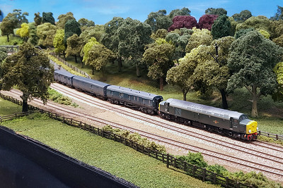 Bradford MRC's N'Gauge Layout 'Titheridge Junction'