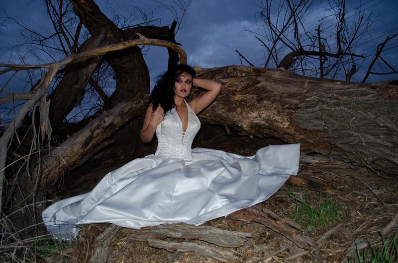 12 02-15 Kandi dress 3916