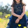 19 04-07 Spring Fever 10 4054-1