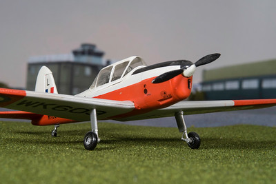 1-48 scale Chipmunk  (13)
