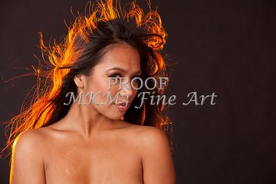 Nude Girl Implied 1346.11