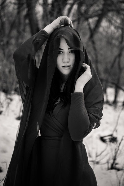 dark-woods-850690