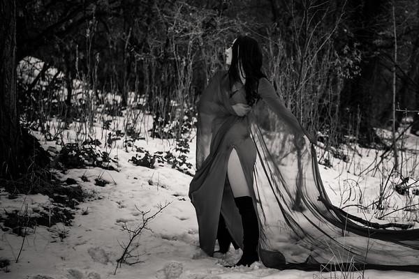 dark-woods-850664
