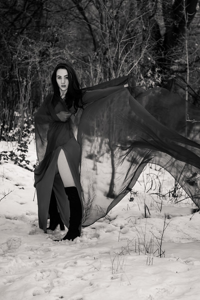 dark-woods-850652