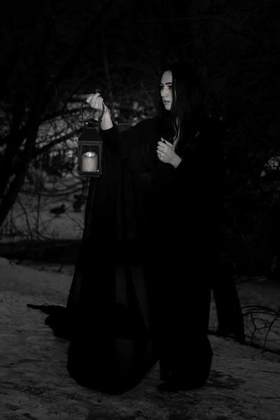 dark-woods-850874