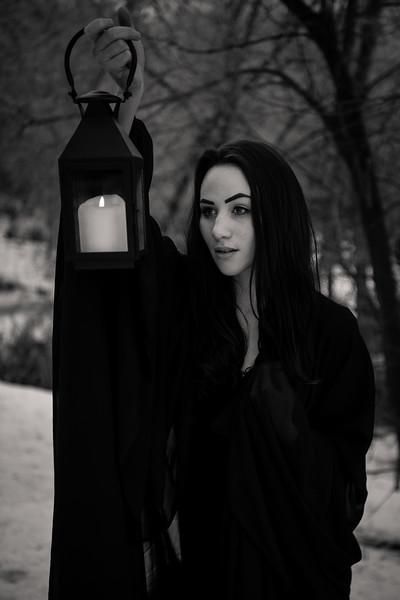dark-woods-850893